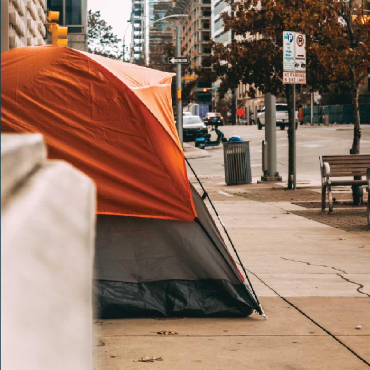 Homeless-less system management